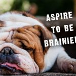 Aspire to be Brainier?
